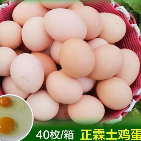 供應 節日禮品農家散養營養土雞蛋