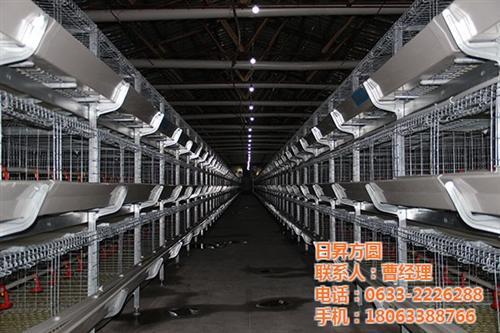 养鸭笼具,方圆笼具,养鸭笼具生产厂家