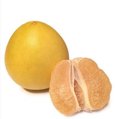 供应 福建琯溪蜜柚白心柚子