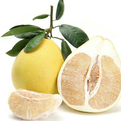 供应 蜜柚白肉柚子