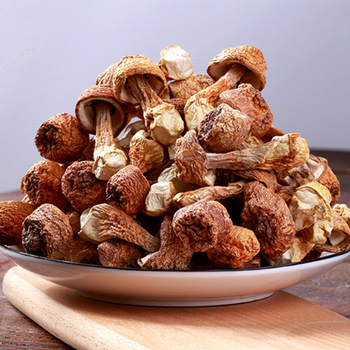 廣西那坡縣姬松茸干貨 姬松茸菌菇蘑菇 姬松菌菇干貨特產