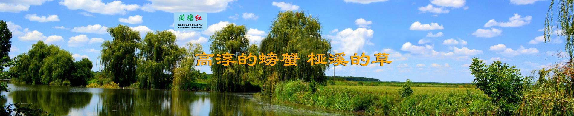 高淳县桠溪国华水草栽培专业合作社