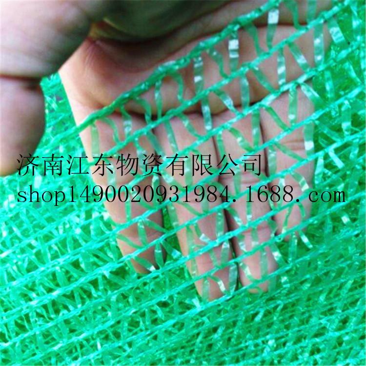 密目环保涤纶安全网 防尘网 盖土网  工地煤场pvc建筑防护网