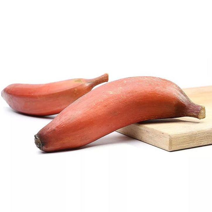 新汇鲜 特产红皮香蕉 美人蕉新鲜水果火龙蕉红蕉 天然原产地