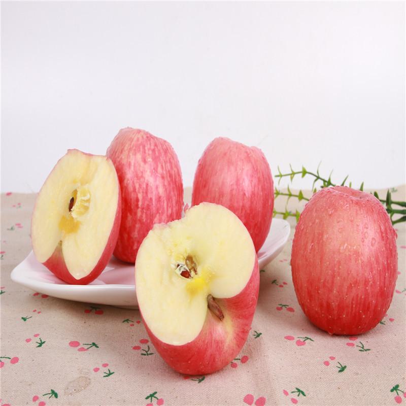 长期供应各种水果  新鲜水果