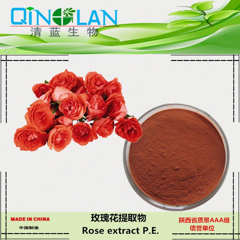 玫瑰花提取物 10:1 玫瑰浓缩粉  玫瑰花粉 美容养颜  消除疲劳