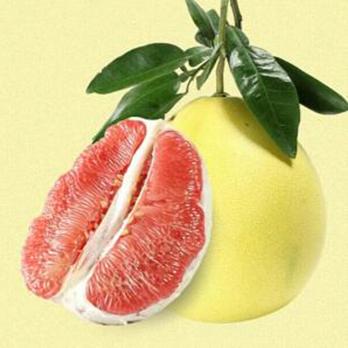 供应 低价批发水果 产自湖南洞庭之畔 红心柚