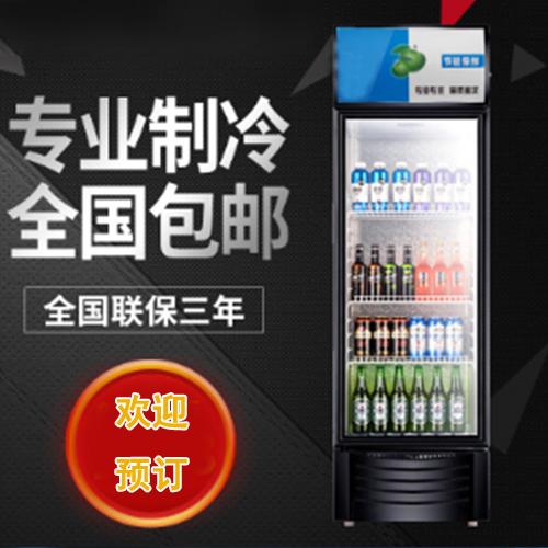 供应 厂家直销立式单温不锈钢厨房冰柜 冷藏冷冻柜