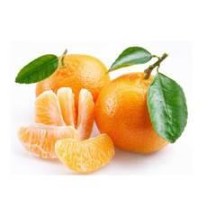 农家自种柑橘芦柑橘子新鲜水果美味营养健康无绿色添加