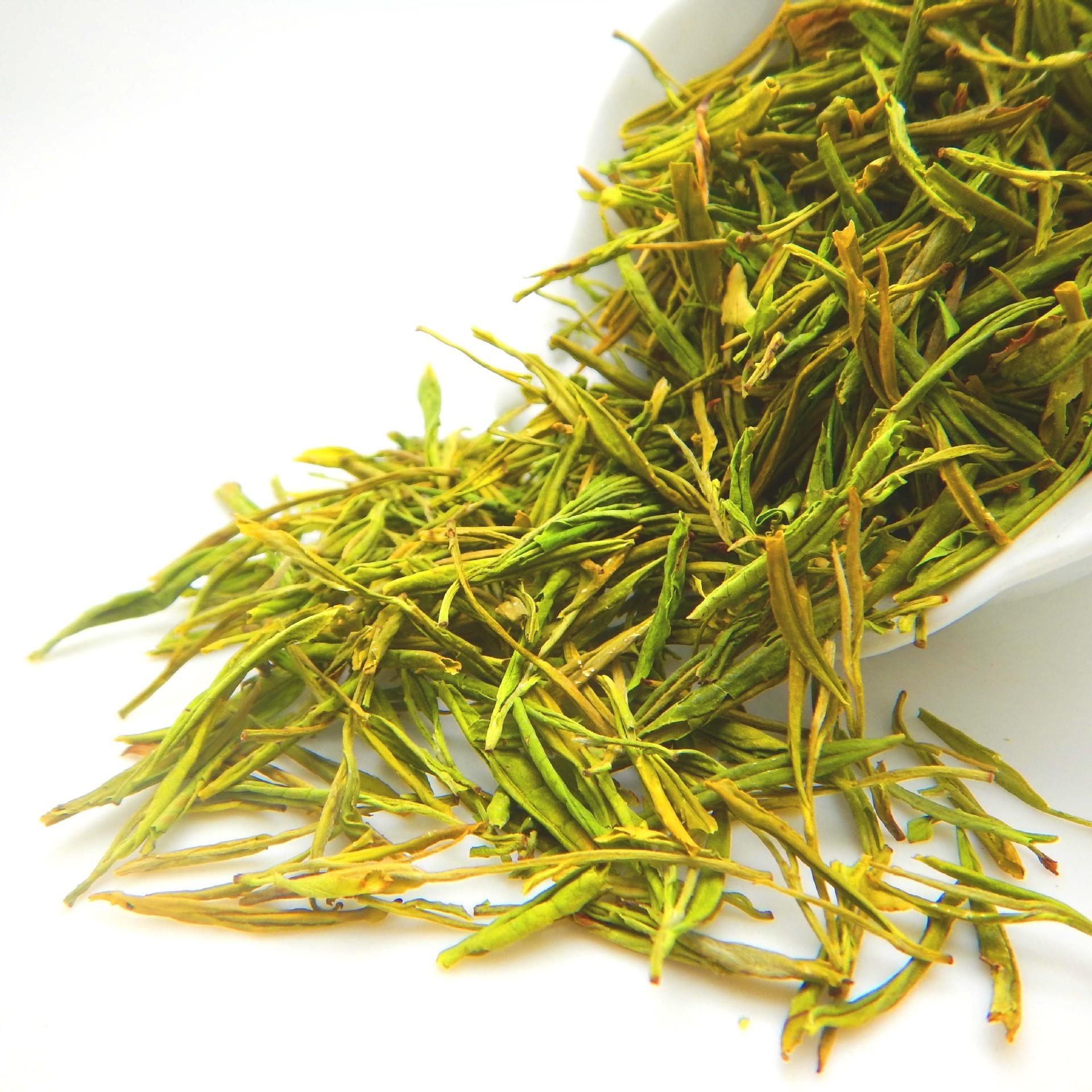 批发特级明前安吉黄金白茶 凤型黄金芽 黄金茶原产地
