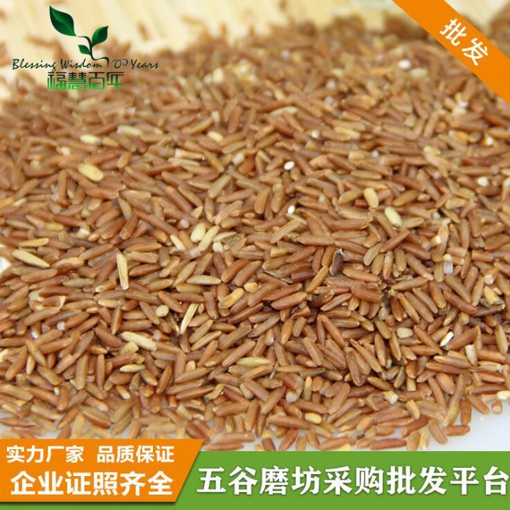 供应 低温烘焙原料批发 熟红米 五谷磨坊 磨粉原料