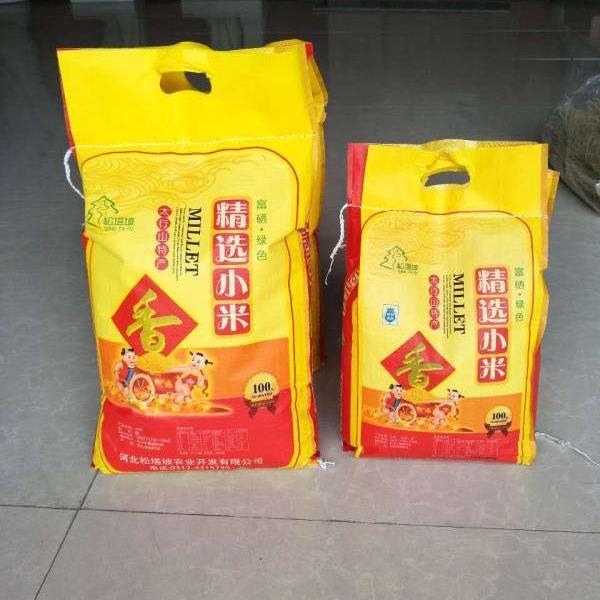供应松塔坡小米  袋装(优选)  5kg    养生小米