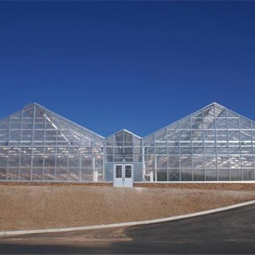 宿迁 生态园艺玻璃温室大棚建设 建设厂家