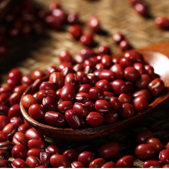 供应厂家直销 精选红豆 赤豆 小红豆 珍珠红小豆 五谷杂粮