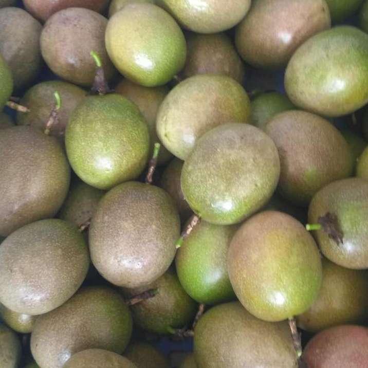 广西产地果园现摘紫香百香果一手货源批发零售