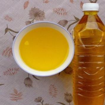 压榨野生山茶籽油.长期茶籽油批发.新茶油