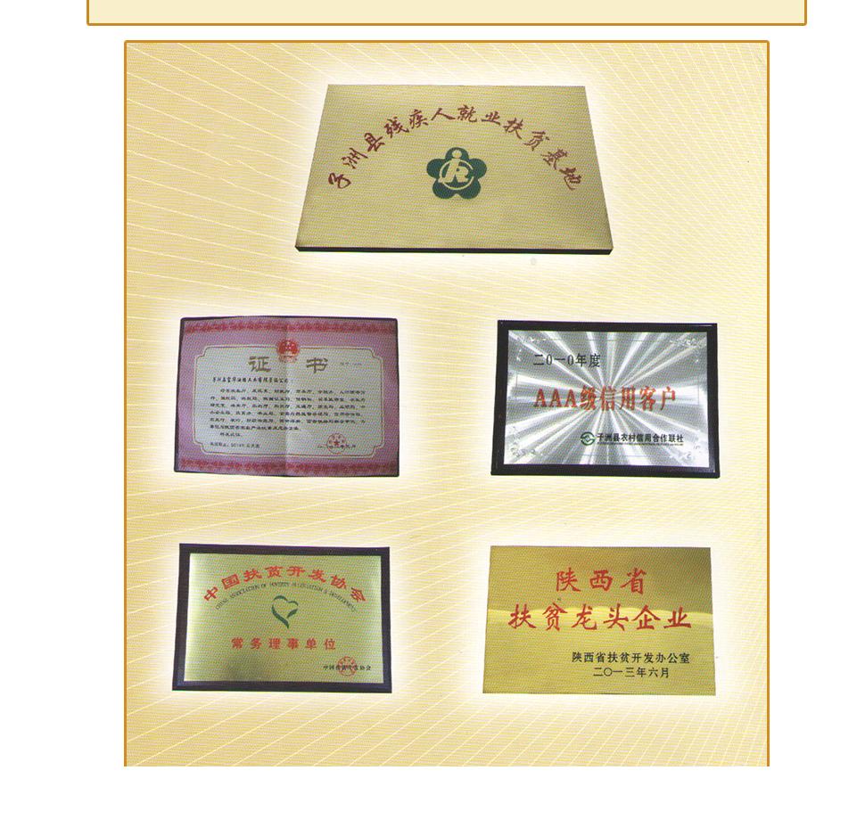陕西富华** 蓖麻籽 发芽率高 精选原料 无坏粒50kg袋装