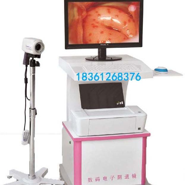 供应瑞华电子RH-220型数字彩色电子数码电子检查镜价格