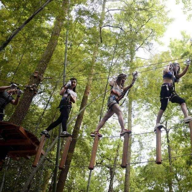 丛林穿越探险_树上探险游乐设备_拓展器械厂家--名扬游乐图片