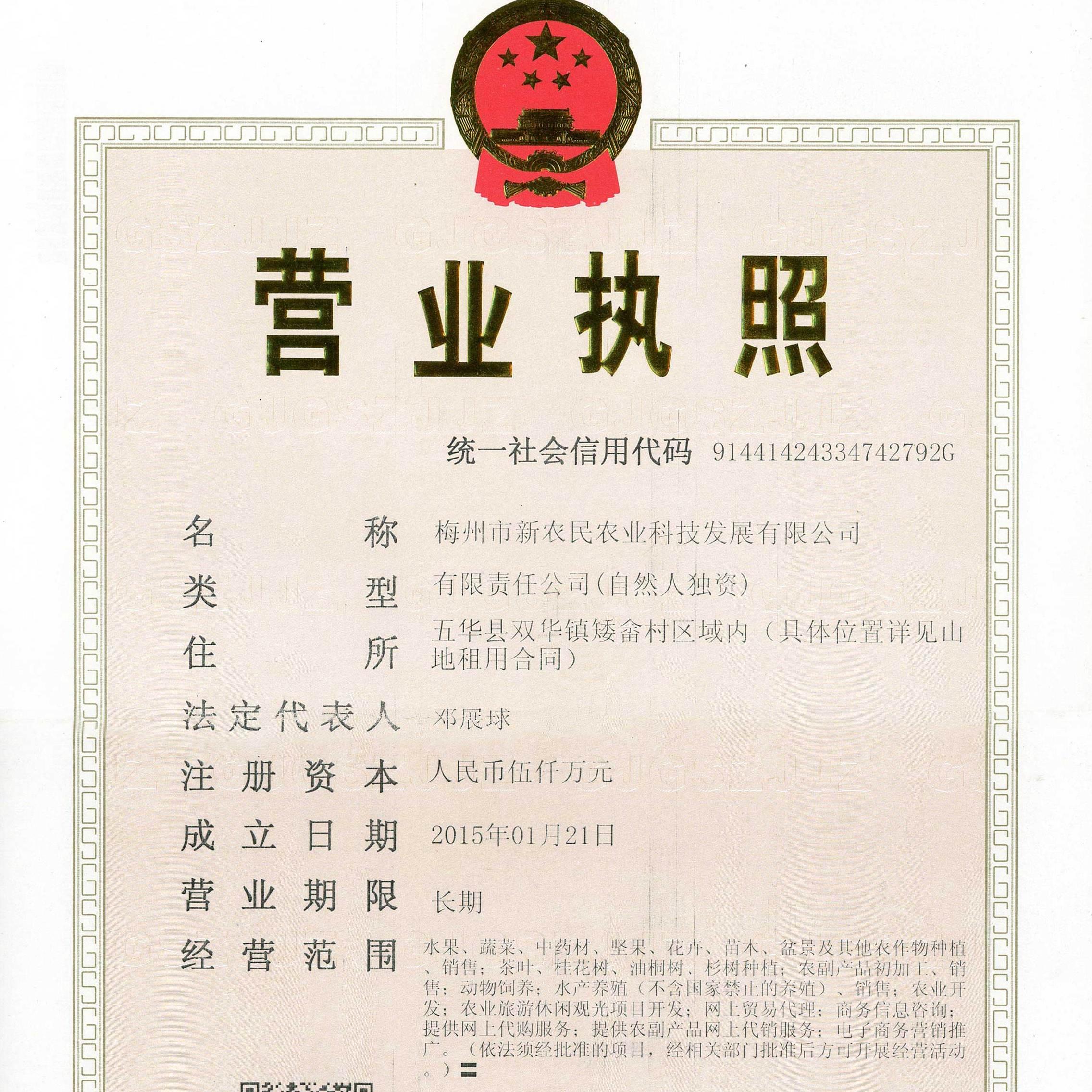 梅州蜜柚原产地果园直供低至1毛钱1斤