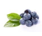 蓝莓粉的功效浅析