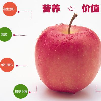 辽西天然特产无公害农家寒富苹果十斤装包装精美脆甜可口多汁老少皆宜营养丰富