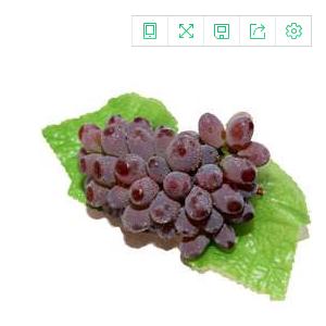 【采摘园林】金色阳光庄园 茉莉香葡萄  新鲜水果 现摘现发 欢迎园林采摘