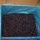 供应 北极冰蓝莓冻果 大兴安岭野生蓝莓冷冻蓝莓批发新鲜冷冻蓝莓鲜果