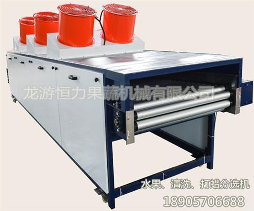 恒力果蔬机械厂家直销(图)|简易型清洗机|河北水果清洗机