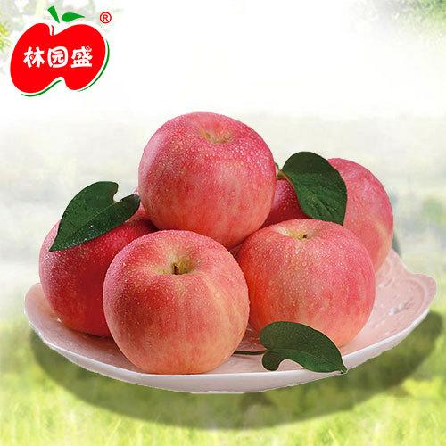 【林园盛】甘肃庆阳苹果16斤装新鲜水果红富士批发包邮礼品盒