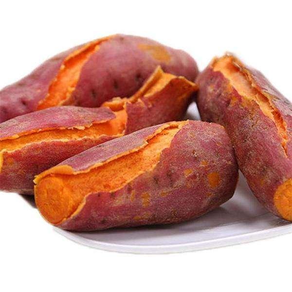 红薯 生态种植健康安全农产品