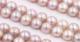 天然紫珍珠 半孔珠