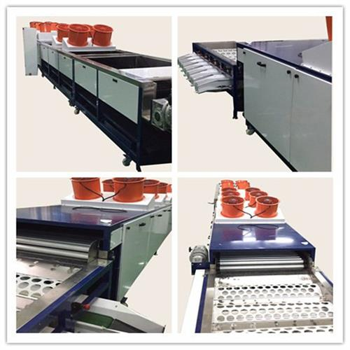 沙糖桔清洗机,恒力果蔬机械优质价廉,沙糖桔清洗机价格