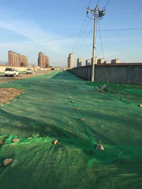 兰州盖土防尘网价格、兰州盖土防尘网、品荣防尘网绿色