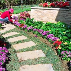 苏州私家别墅花园绿化 花园设计绿化施工 苏州庭院景观设计公司