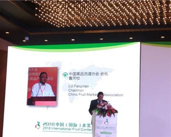 鲁会长2018中国(国际)水果大会讲话