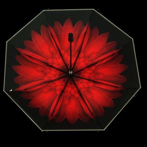 供应 新款小黑伞 碎花双层黑胶防晒太阳伞女 防紫外线 遮阳伞 晴雨伞女